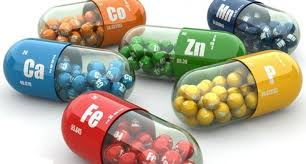 The Importance of Using Pregnancy Supplements
