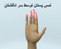 لمس پستان توسط سر انگشتان